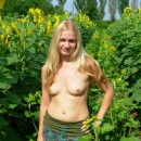 Blonde with small tits at field of sunflowers