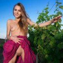 Very beautiful babe posing naked at vineyard