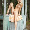 Leggy blonde shows her big pussy in the gazebo