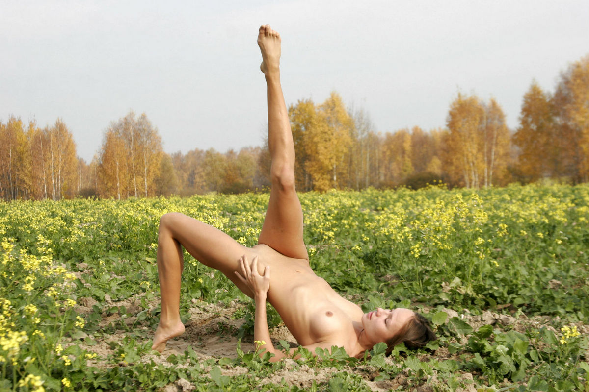 Gymnastic exercises outdoors russian forest 9