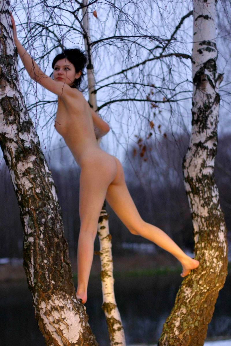 Sexy Russian Brunette Posing Naked At Winter Forest -3533