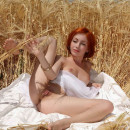 Red-haired beauty with big pussy lips in a wheat field