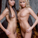 Two gorgeous girls (brunette and blonde) show their shaven charms up close