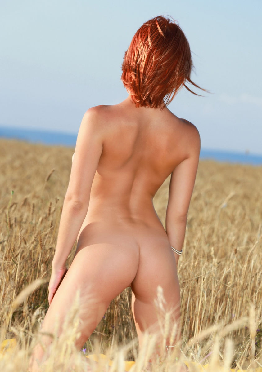 Gorgeous Busty Girl Violla A In A Wheat Field  Russian -8405