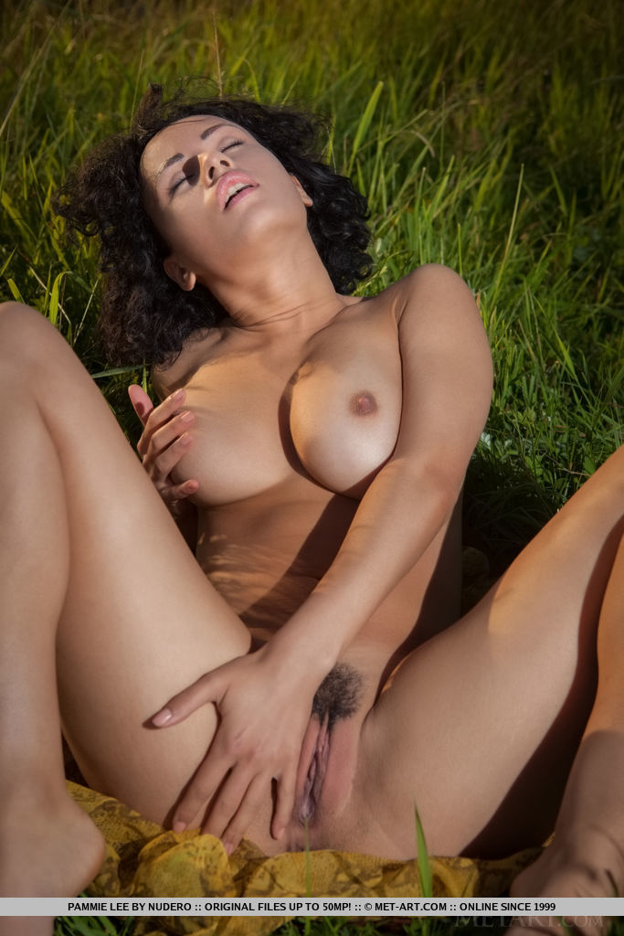 Pammie Lee sensually poses among the grassy field as she bares her curvy body and trimmed pussy.