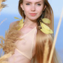 Like a delicate wild flower in the middle of a field, Honey Liz' innocent beauty and nubile body stands out