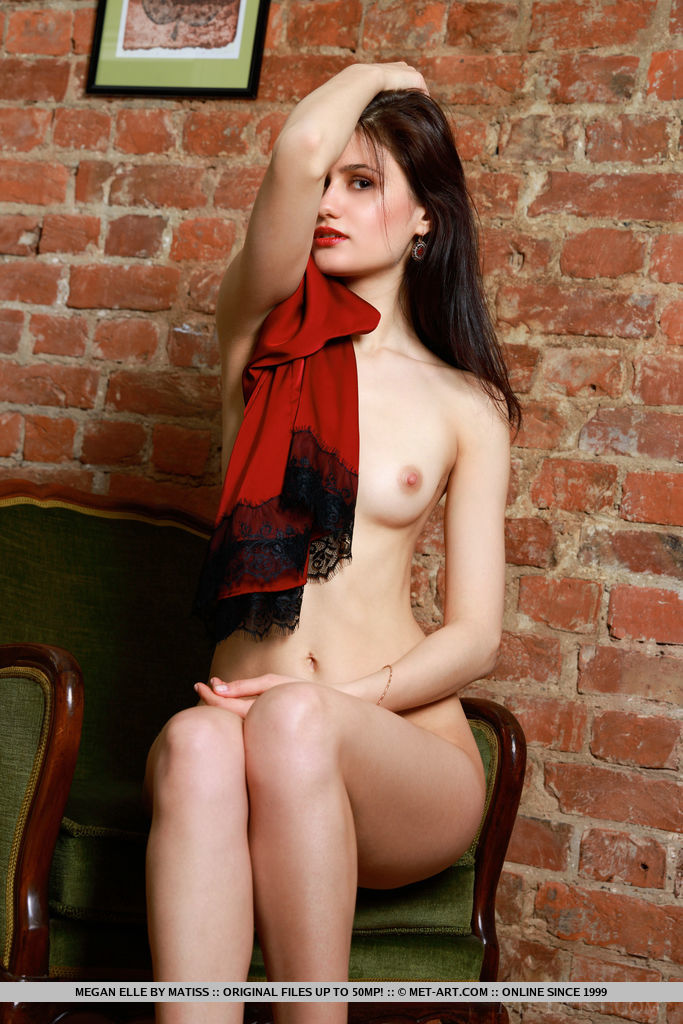 Megan Elle shows off her gorgeous body and sweet landing strip on the chair.