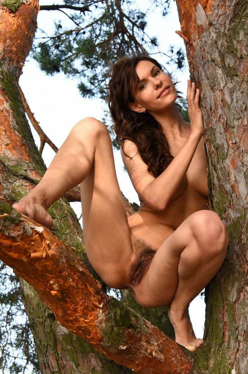Pussy in the woods