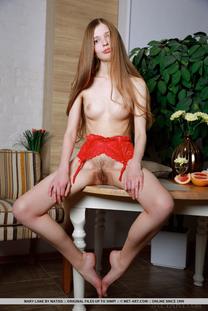 Mary Lane sensually poses on the table as she flaunts her unshaven pussy.