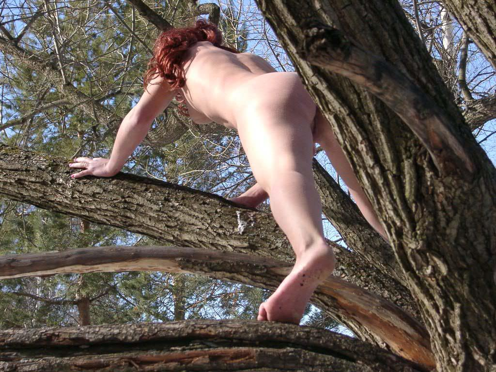 Nude girl climbs a tree to show pussy — Russian Sexy Girls