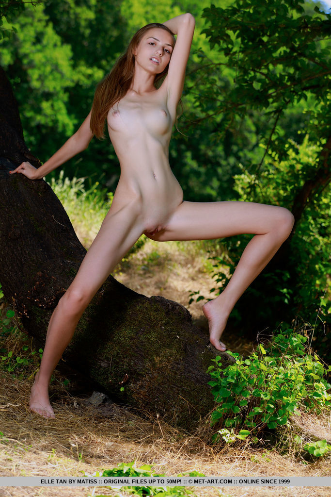 Elle Tan poses in the forest as she displays her petite body and sweet cookie.
