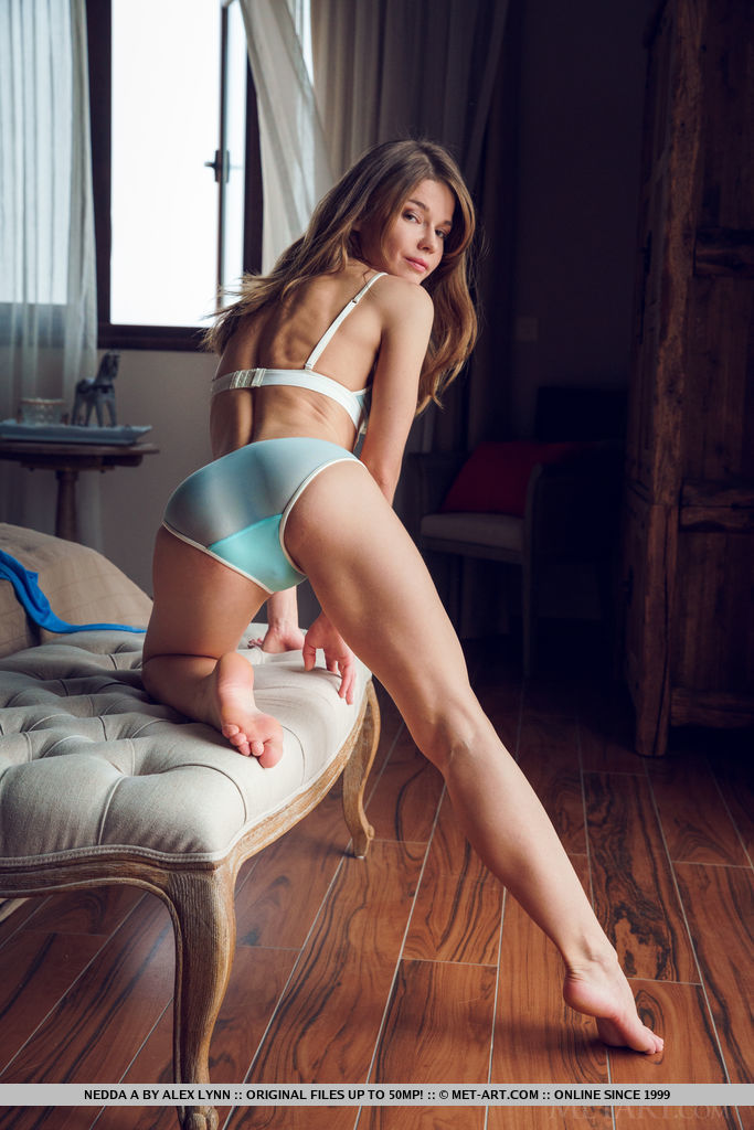 Nedda A performs a slow and sensual striptease of her lingerie while showcasing her tight body