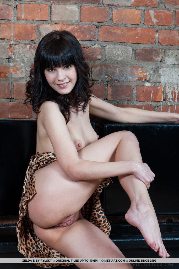 Like a frisky, naughty kitten, Zelda A takes off her animal print lingerie dress before playfully posing for the camera.