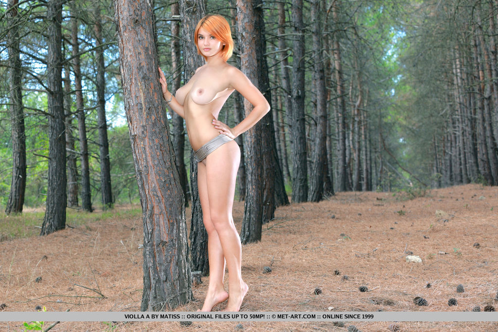 Redhead Violla A displays her amazing body as she poses among the pine trees.