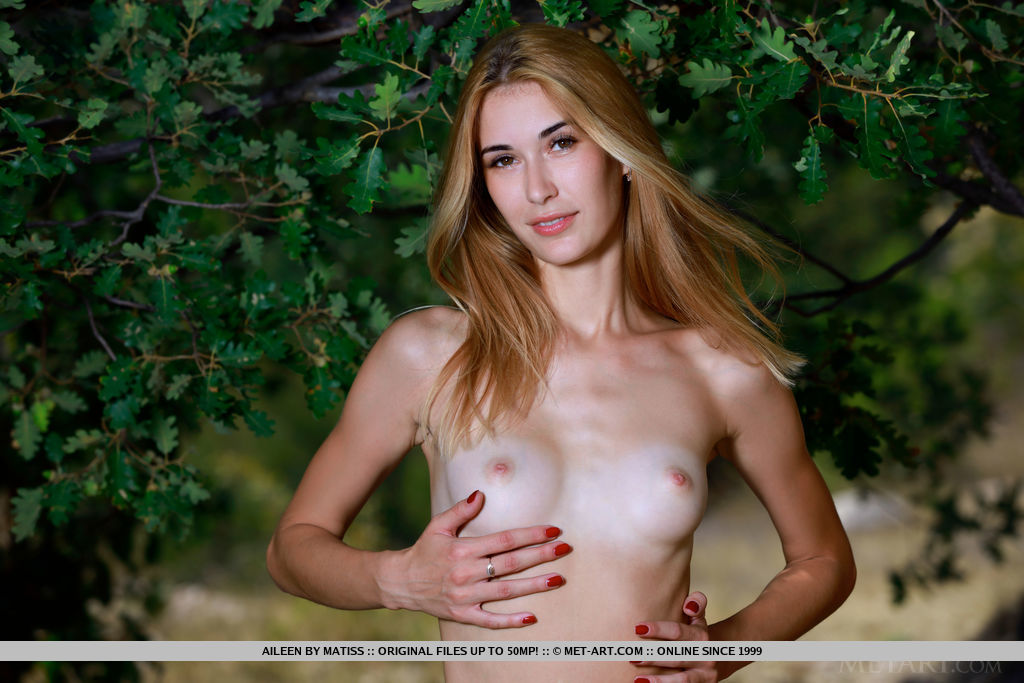 Aileen strips outdoors, baring her tanned body and shaved pussy.