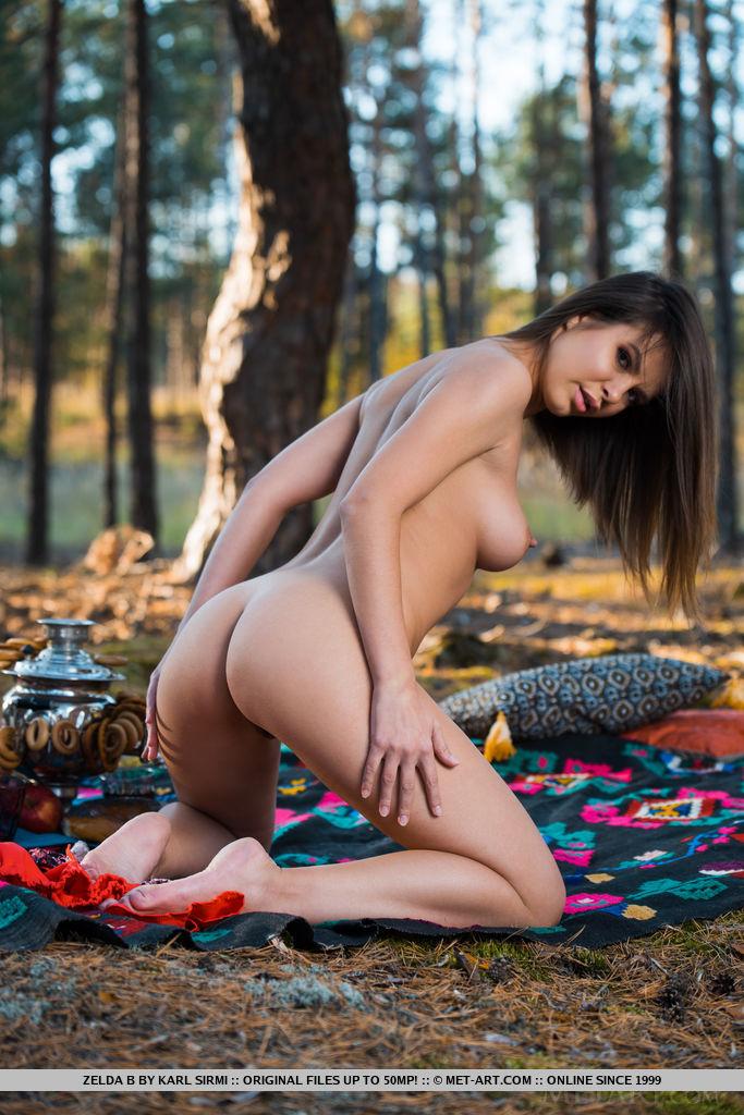 Zelda B tira sua blusa de babados na floresta e deita-se na manta de piquenique e mostra seu corpo esbelto com melões suculentos e boceta sem pelos.