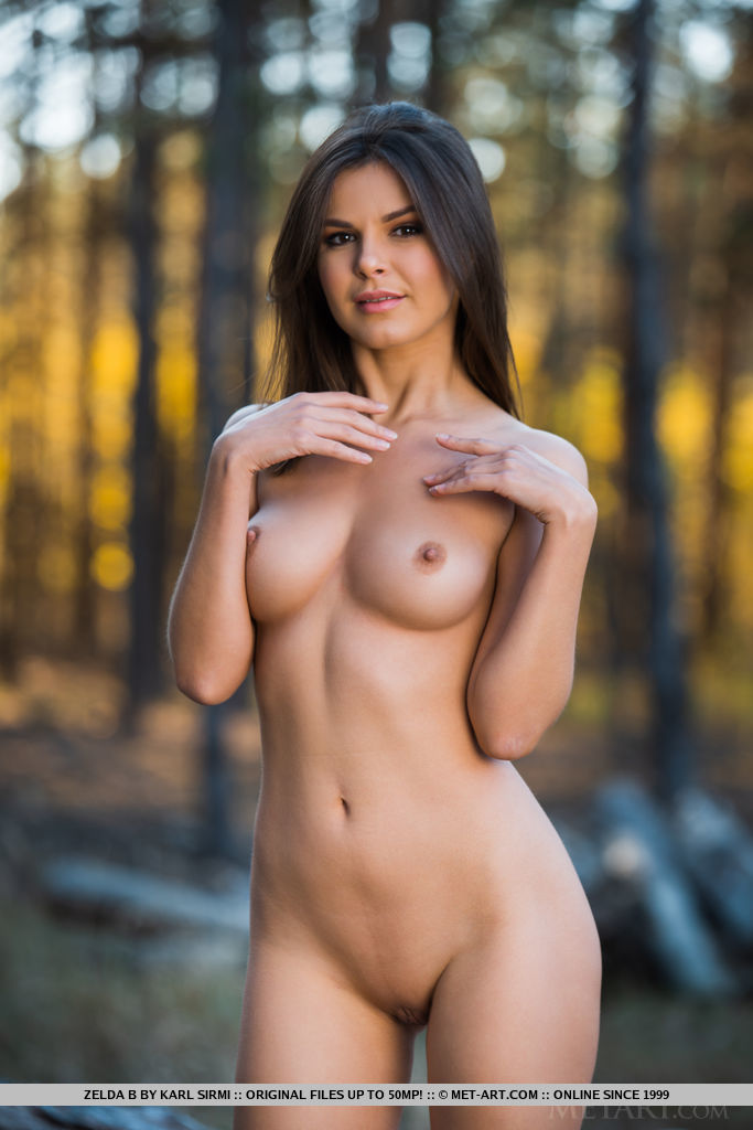 Zelda B, just finished taking down trees. She poses holding her ax and decides to take off her clothes and reveal her sizzling hot abs and curves on the right places.