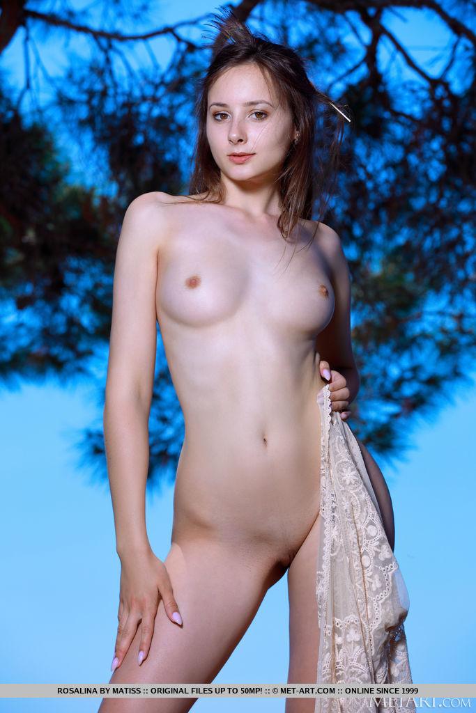 A charmosa Rosalina, de forma sedutora, descobre seu corpo esguio e bumtastic atrás ao ar livre sob uma árvore.